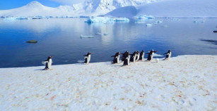 Antarctica – Venturing into the untouched continent.